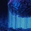 5 beginner AI Model Tips - Trayport